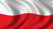Polska wersja jezykowa